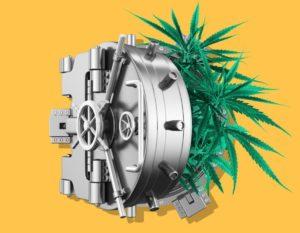 jasdeep singh, ct, uconn, cannabis, SAFE Act